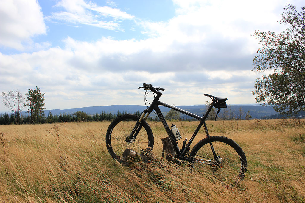 Mountainbiken in omgeving Winterberg